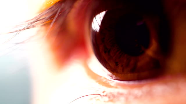 stockvideo's en b-roll-footage met macro menselijk oog - ooglid