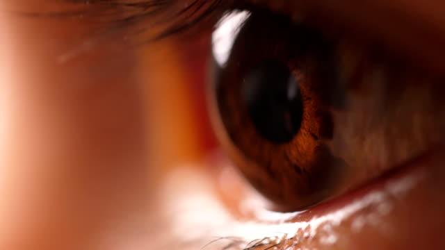 makro mänskligt öga - ögon bildbanksvideor och videomaterial från bakom kulisserna
