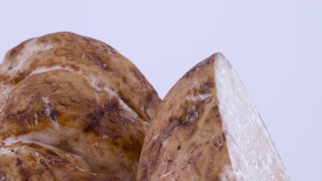 makro aus einer weißen trüffel pilz hälften drehen. auf dem weißen hintergrund isoliert. - knollig stock-videos und b-roll-filmmaterial