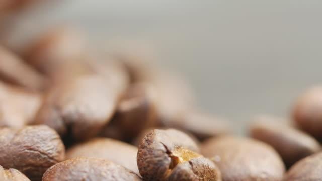 vídeos y material grabado en eventos de stock de macro de la semilla de café - café negro