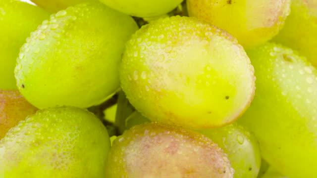 vídeos de stock, filmes e b-roll de gotas de macro tiroteio de um cacho de uvas brancas com água. girar no gira-discos. close-up. - punhado