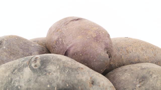 makro-aufnahmen des oberen teils des violetten kartoffeln haufen. langsam rotierende auf der drehscheibe auf dem weißen hintergrund isoliert. hautnah. - knollig stock-videos und b-roll-filmmaterial