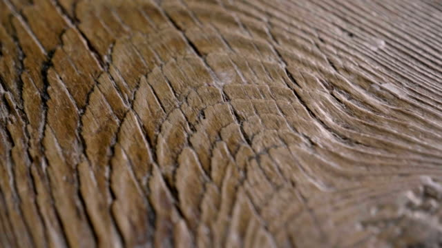 macro shot of a precious wood in which you can see the color, the wood grain, the knots and the high quality workmanship. - drewno materiał budowlany filmów i materiałów b-roll