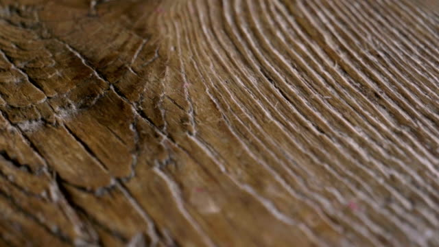macro shot of a precious wood in which you can see the color, the wood grain, the knots and the high quality workmanship. - drewno tworzywo filmów i materiałów b-roll
