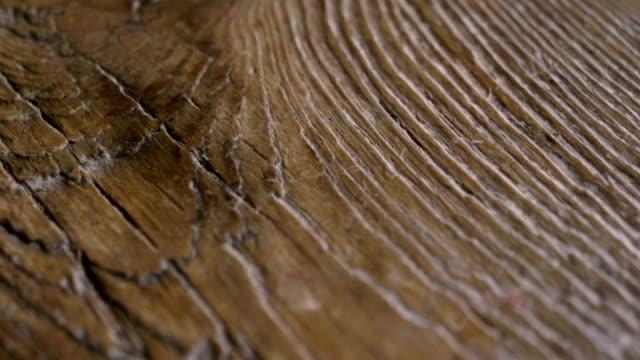 vidéos et rushes de macro shot d'un bois précieux dans lequel vous pouvez voir la couleur, le grain de bois, les noeuds et la fabrication de haute qualité. - bois texture
