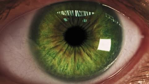 vídeos de stock e filmes b-roll de macro shot of human eye smartphone screen reflection iris technology addiction social networks - castanho