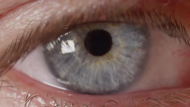 MACRO DOF: Macro shot of male eye, refocusing from intensely blue iris to lashes video