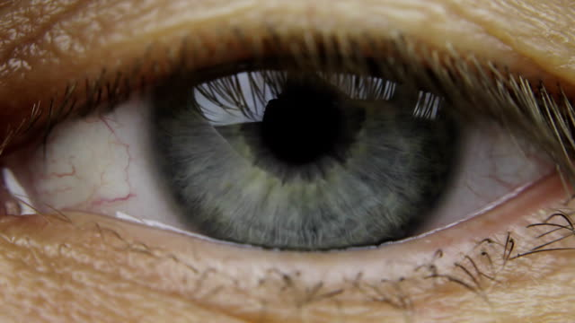 Macro shot of male human blue grey eye blinking. video