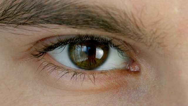vídeos de stock e filmes b-roll de macro shot of male human brown eye - castanho