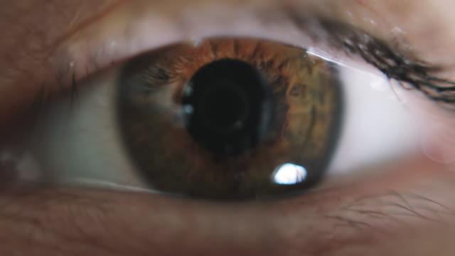açık kadın kahverengi göz makro atış. - kahverengi stok videoları ve detay görüntü çekimi