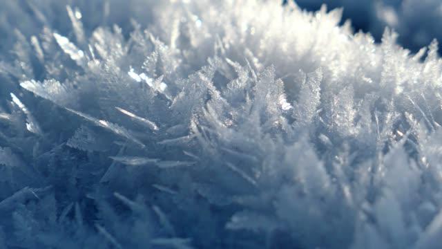 makro snöflingor iskristaller och frostat gräs - icicle bildbanksvideor och videomaterial från bakom kulisserna