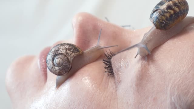 macro video shot of of snails on a female face. Snail Slime rejuvenates the skin Snail slime rejuvenate skin . A close-up of snails on a female face face mask videos stock videos & royalty-free footage