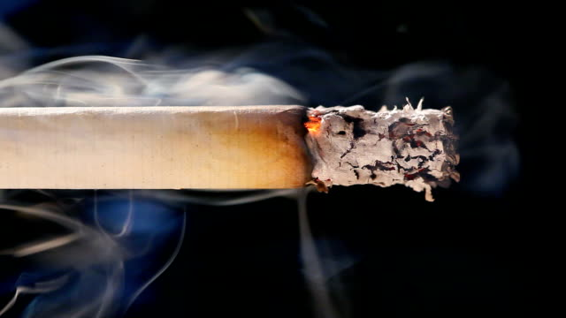 Macro view of burning cigarette with smoke on black video