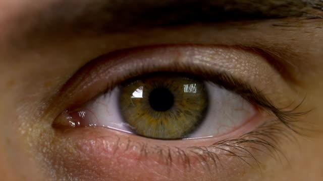 makro syn på människans ögonöppnande och att bli förvånad - male eyes bildbanksvideor och videomaterial från bakom kulisserna