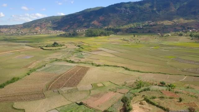 madagaskars högland village och ris fält drönarvy - madagaskar bildbanksvideor och videomaterial från bakom kulisserna