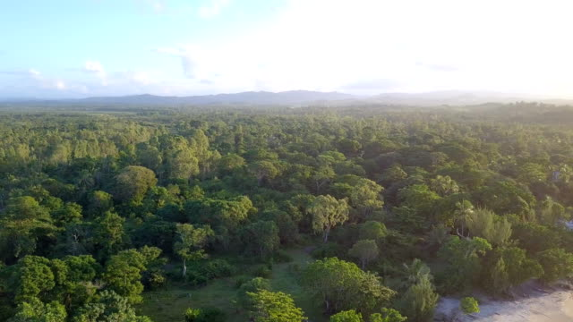 Madagascar Mahambo Tropical Coast Drone View Drone flight along the east coast of Madagascar east stock videos & royalty-free footage