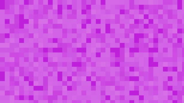 Magenta digital squares background video