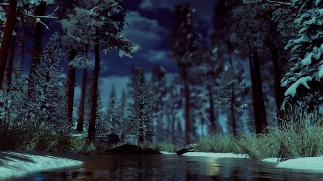 sisli alacakaranlıkta karlı kış ormanında sihirli peri ışıkları - fantastik stok videoları ve detay görüntü çekimi
