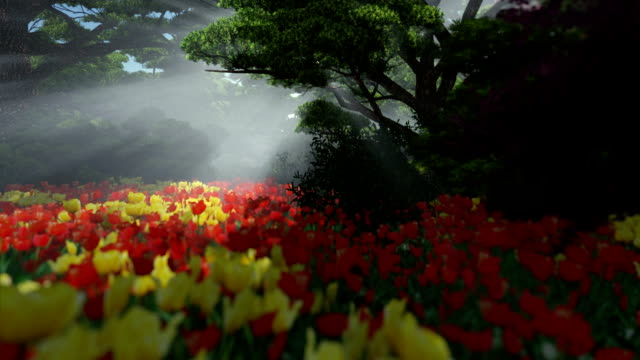 Magic forest with colorful tulips, sun shinning through trees, pan and tilt video