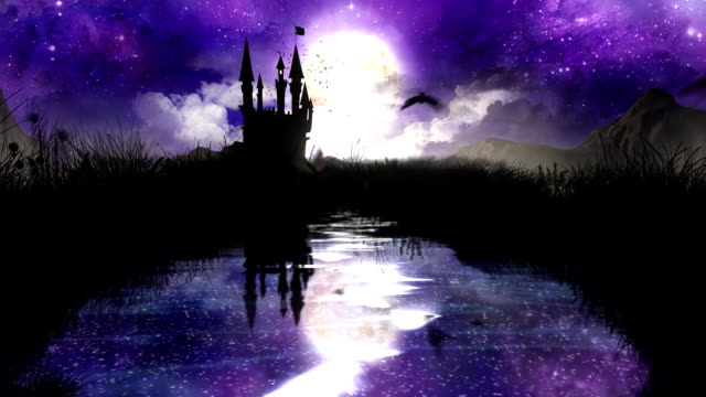 Magic Night over the pond with castle video