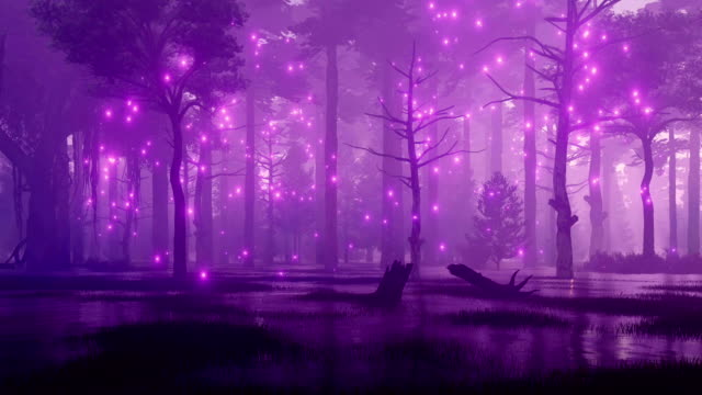 Magical lights on creepy night forest swamp Mysterious night forest swamp with magical firefly lights flying in the air among creepy ancient trees. Fantasy 3D animation. paranormal stock videos & royalty-free footage