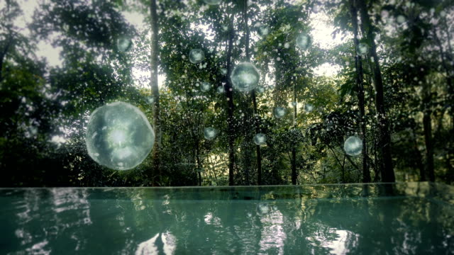 Magical rainforest. Infinity pool with floating plasma bubbles