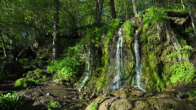 森の中で不思議なストリーム - 湧水点の映像素材/bロール