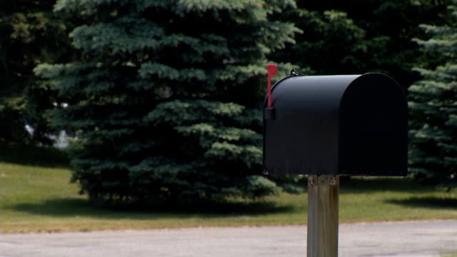 Mailbox with Heavy Traffic