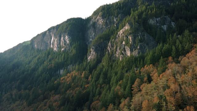 tall rocky cliffs altında sonbahar renk ağaçlar majestic dağ anan - bakir yer stok videoları ve detay görüntü çekimi