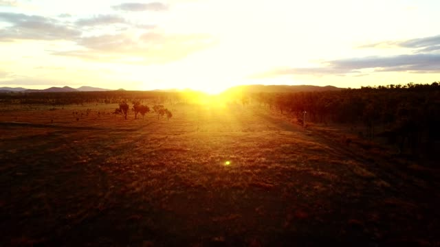 majestic sunset in australia outback video