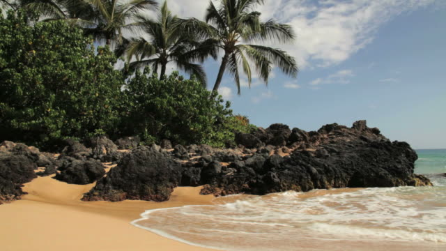 Makena Surf video