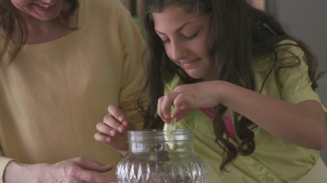 vídeos de stock e filmes b-roll de making a refreshing homemade lemonade - limonada tradicional