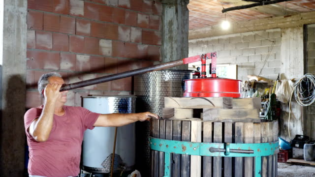 Making homemade wine in South of Italy: wine maker pressing grapes video
