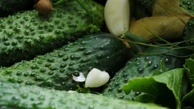 att göra inlagda gurkor - marinad bildbanksvideor och videomaterial från bakom kulisserna