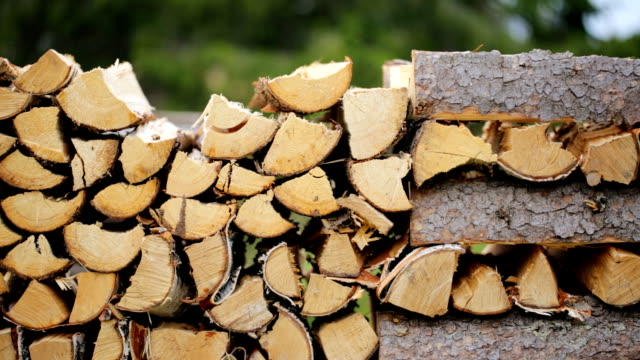 Making pile of logs outdoors Making pile of logs outdoors firewood stock videos & royalty-free footage