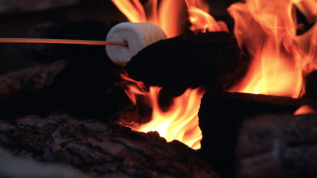 Making Smores Roasting Marshmellow B-Roll Cinematic smore making with bright orange flames in camping fire pit marshmallow stock videos & royalty-free footage