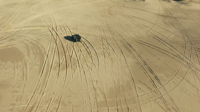 Making tracks on the dunes video