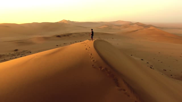 vídeos de stock e filmes b-roll de making tracks over the sand dunes - horizonte