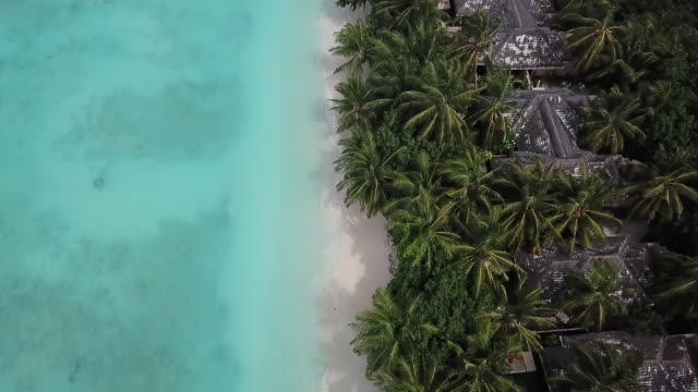 Maldives Beach by Drone