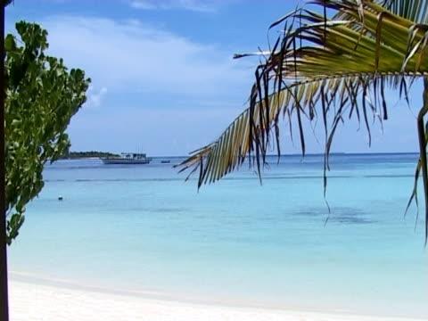 vídeos de stock e filmes b-roll de amigo: maldivas praia cena - embarcação comercial