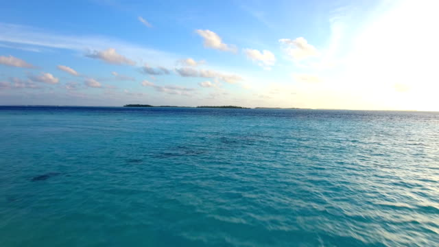 Maldives, blue sky, turquoise sea, white sand and green palm trees. video