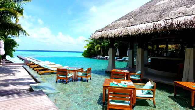 maldives, blue sky, turquoise sea, white sand and green palm trees. - vacanze video stock e b–roll