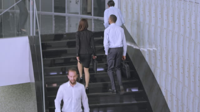 TS Male and female business coworkers walking up the staircase video