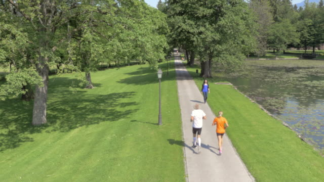 aerial male and female runner running through park in sunshine - bench stock videos & royalty-free footage