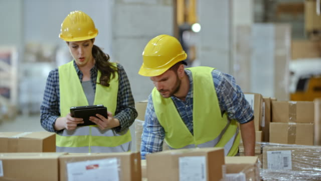 Male and female warehouse supervisor scanning a pallet with packages video