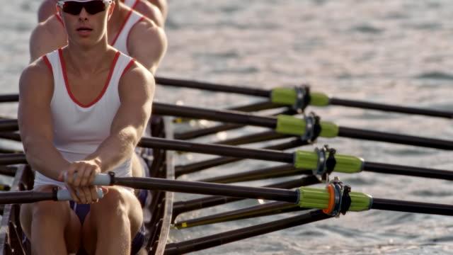 vídeos de stock, filmes e b-roll de slo mo masculino atletas de remo em um lago ensolarado - remo atividade física