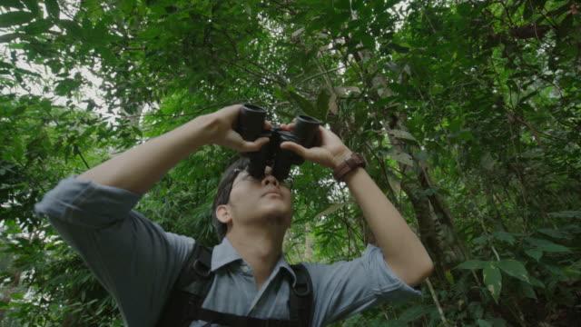 男性自然で双眼鏡で鳥を見て - バードウォッチング点の映像素材/bロール
