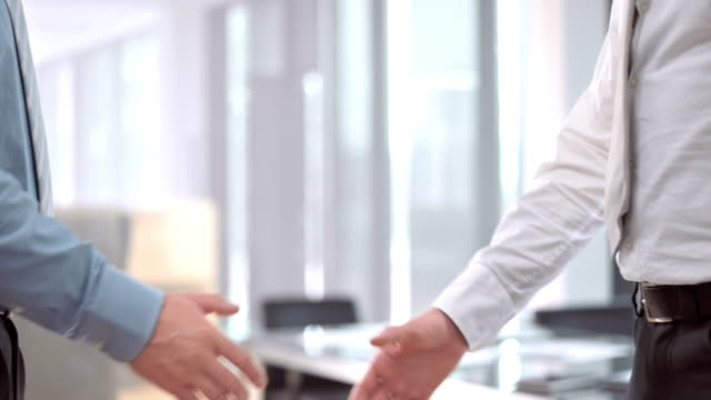 SLO MO DS Male business handshake video