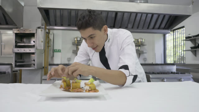 male chef decorating an appetiser - chef stock videos and b-roll footage