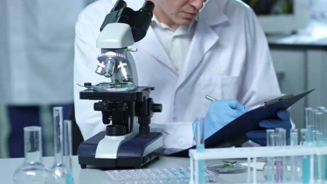 male chemist conducting scientific research - science research stock videos & royalty-free footage